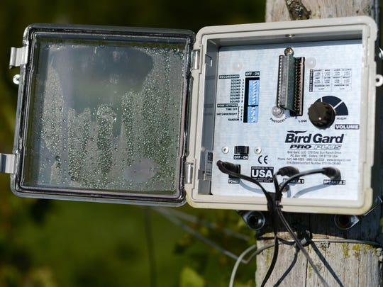 One of two Bird Gard units that put out sounds of distressed birds to speakers the Trout Springs Winery vineyards.