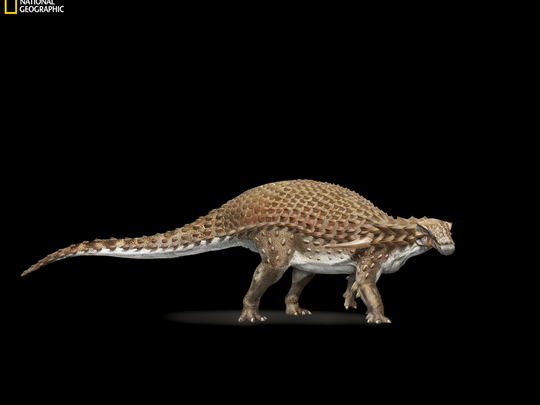 An Artists Conception Of The New Dinosaur That Was