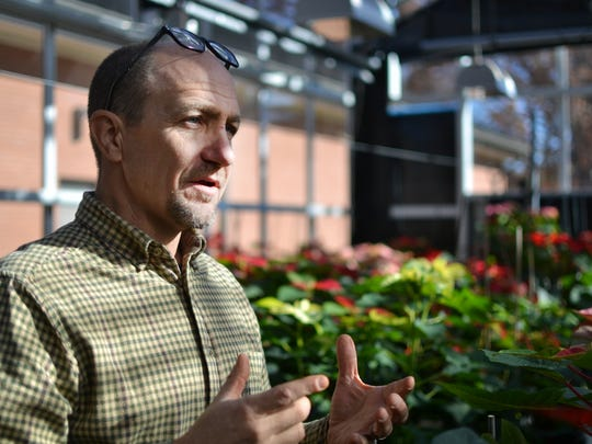 Jim Faust, an associate professor in Clemson University's plant and environmental sciences department, talks about the history of the poinsettia plant at the university's greenhouse complex.