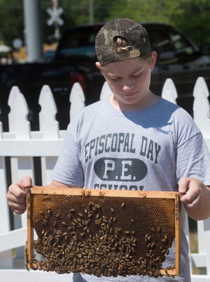 Episcopal Day School student Jake Heseman learns about beekeeping at the From the Ground Up Garden on Hayne Street Tuesday morning April 26, 2016.