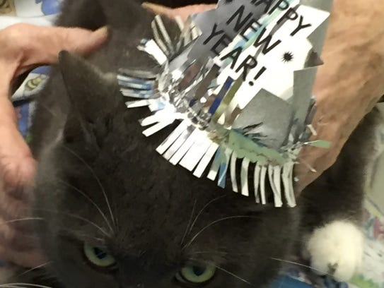 Diamond welcomes the new year.