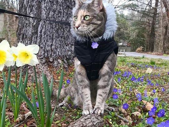 Emmy Lou sports a winter coat.