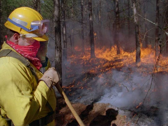 A North Carolina Forest Service firefighter shields his face from the heat of a brush fire in northern McDowell County in 1995.
