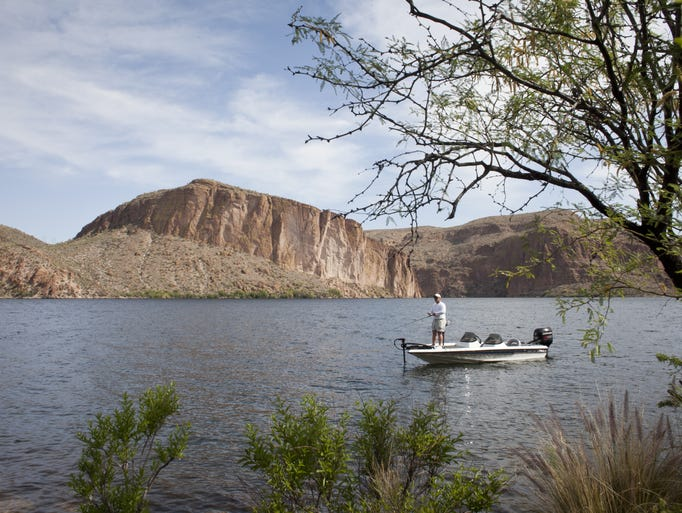 adult quagga mussels found lake powell lost