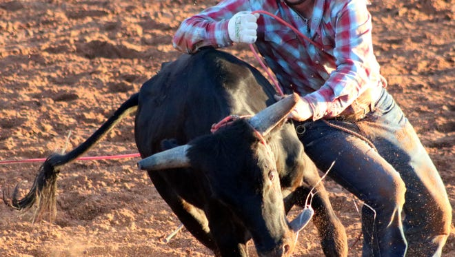 A cowboy tries to wrestle down a steer during the sixth annual Otero County Fair Ranch Rodeo on Thursday night at the Guy Warden Arena.
