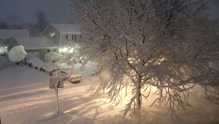 Heavy snow clings to trees along Oak Forest Drive in