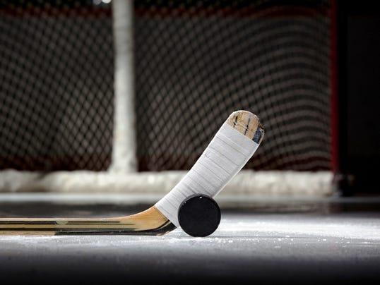 636217413068550981-ice-hockey-stick-puck-net.jpg