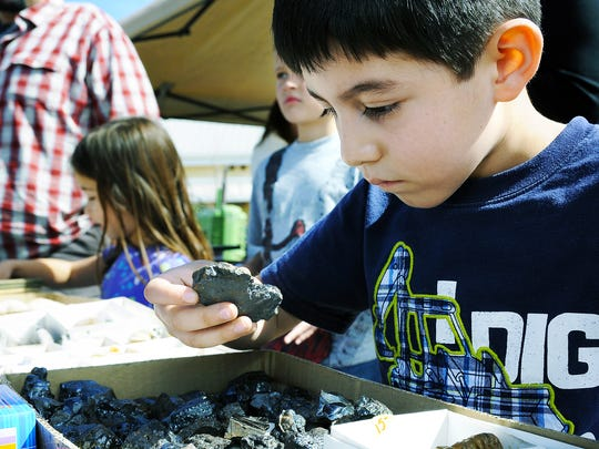 """Erick Gomez of Las Cruces, picks out a hematite and says to his dad with certainty, """"This one, this is the one, I like this one,"""" at the 2015 Museum Rocks! Gem & Mineral Show."""