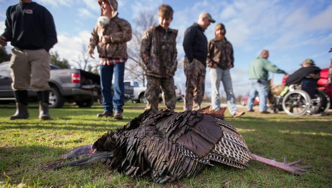 A turkey, part of a batch of about 15 birds taken during a morning hunt in Knox, Saturday, April 28, 2018. This hunt, during Indiana's Spring turkey season, was held by Turkey Tracks, part of the Eric Corey Foundation, named in honor of the Knox, Indiana man who died in 2012 at 25 years old due to complications of ALS. The foundation has served hundreds of disabled and terminally ill people since 2009 by providing free-of-charge hunting trips in Tennessee, Indiana, and Michigan.