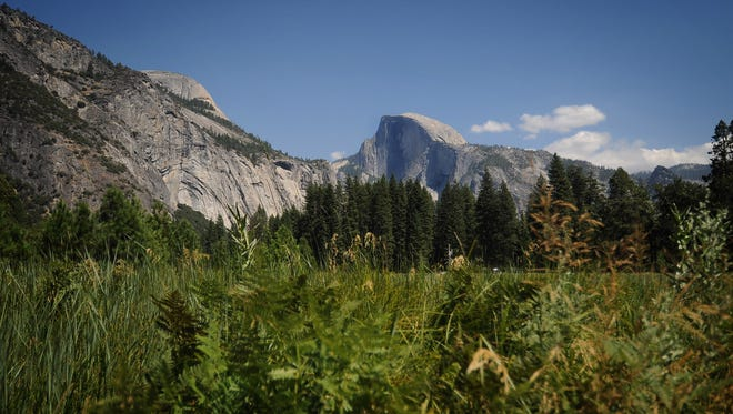 Half Dome can be seen from the Yosemite Valley floor.