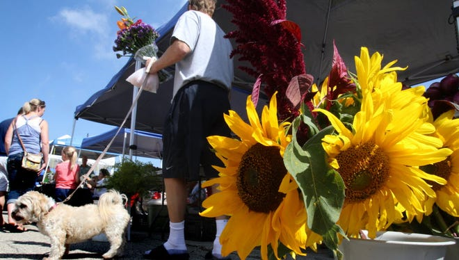 The New Berlin Farmer's Market is June 16 from 8 a.m. to noon at the New Berlin City Center.