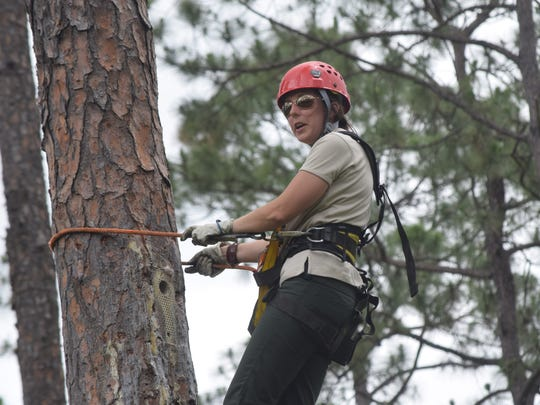 Ashley Sturm, a wildlife technician with the Kisatchie National Forest, talks Thursday about the woodpeckers that are tagged in the national Forest.