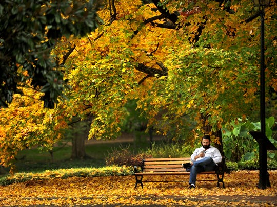 Graduate student Ahmad Al-Mulhem sits on the bench beneath a canopy of fall color on the Vanderbilt campus in Nashville.