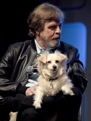 Mark Hamill on stage at the Star Wars Celebration 2016