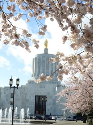 Cherry blossoms in bloom at the Oregon State Capitol in Salem on the first day of spring on Wednesday, March 20, 2013.
