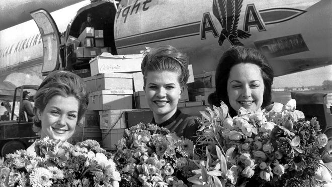 """January 18, 1964 - Fresh picked California flowers (almost a ton of them) shared the spotlight with three Memphis beauties on Jan. 18, 1964. They are (from left) Miss Jane Brackhahn; Miss Barbara Anderson, Miss Memphis; and Miss Patsy Jones, a former Miss Memphis. The flowers were flown here from California to decorate Goldsmith's for their """"California on the Mississippi"""" display this week."""