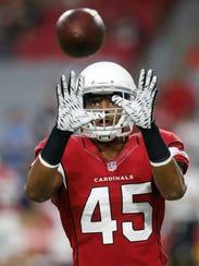 Arizona Cardinals linebacker Edwin Jackson (45) warms