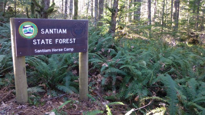Monument Peak Trail System and Horse Camp is in the Santiam State Forest near Gates.