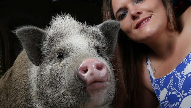 Canal Winchester resident Courtney Elliott poses for a photo next to Charlotte, a Juliana pig that Elliott had been trying to get the city of Canal Winchester to allow her to keep as an emotional-support animal. City Council is expected to make a final decision July 6, but it might be a moot point as Charlotte has been moved out of the home and Elliott is moving out of the city.