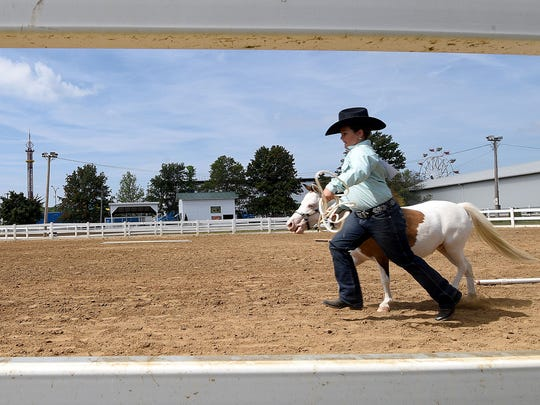 Allie Pifher , 9 years old of Shelby, runs her horse Summer in the ring during competition at the Richland County Fair.