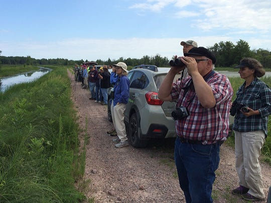 Participants in a field trip sponsored by the Natural Resources Foundation of Wisconsin look for trumpeter swans July 16 near Babcock.