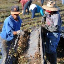 Farmworker overtime bill draws fire