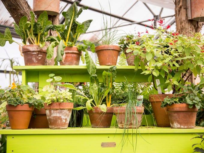 Des moines register - Greater des moines botanical garden ...