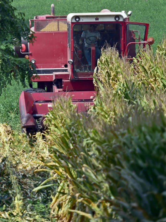 A farmer uses a combine to cut corn in a field, Wednesday along Hades Church Road near New Franklin.