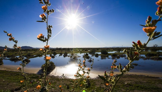 Water flows toward the Gila River near Sacaton, the site where Phoenix water will be stored under a new deal.