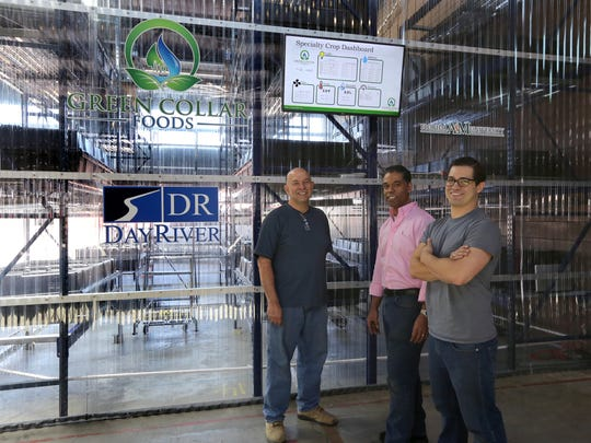 Co-owners of Green Collar Foods from left: Ray Quatrochi,58, Ron Reynolds,44, and Daniel Casanas,29 inside their vertical farming space  in Shed 5 at the Detroit Eastern Market Friday.