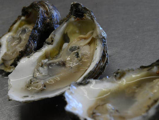 A trio of oyster shucked by Mike McGee at Chincoteague