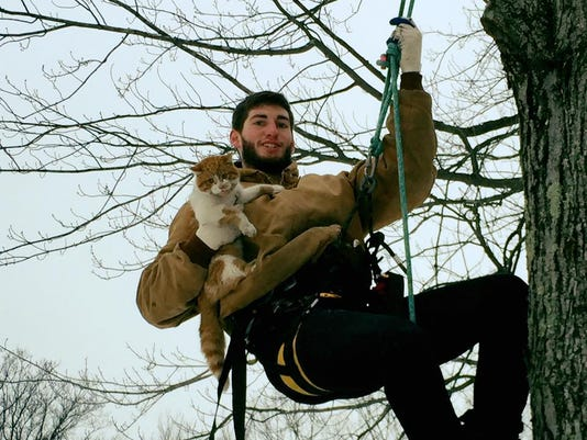 635894107842815282-Cat-Rescue.jpg