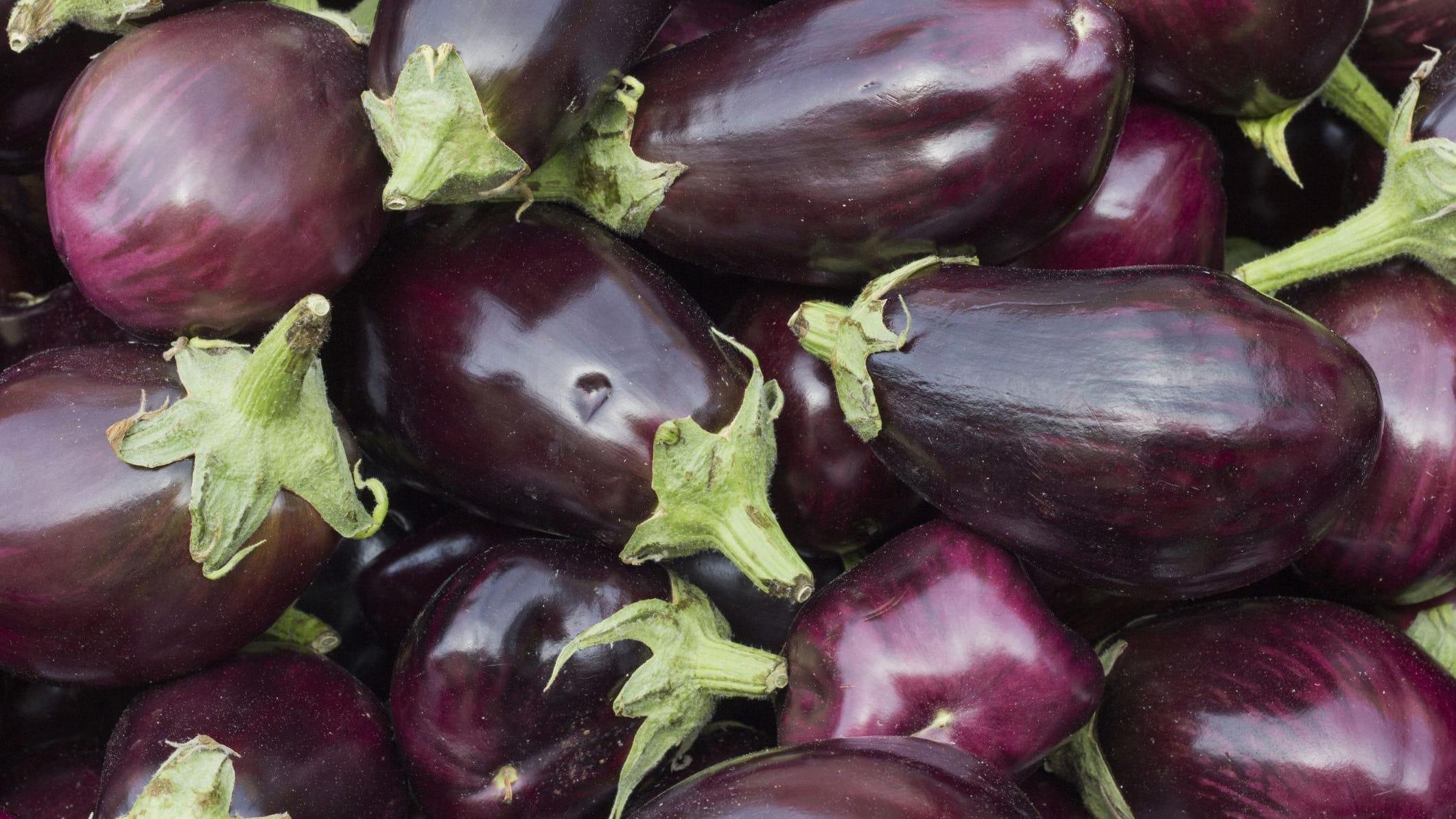 Vegetable Aubergine Black Beauty Appx 800 seeds Egg Plant