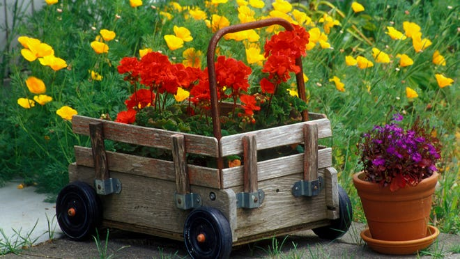 Unusual containers and groupings of colorful annuals add visual interest to summer gardens.