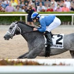 Mohaymen rolled to a win Jan. 30 in the Grade II Holy Bull.