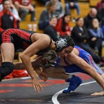 Area wrestlers set for state tournament