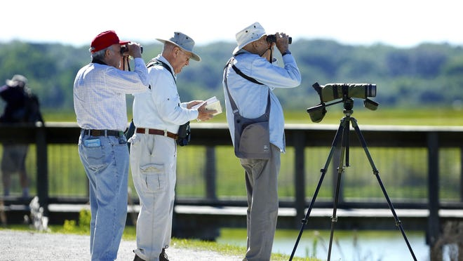 Lee Yoder, right, Bill Pennewille, and Lynn Whitman, left, look for birds and other wildlife as their bird-watching group from Penney Farms in Clay County walks through Sweetwater Wetlands Park in Gainesville in this April 2019 file photo.