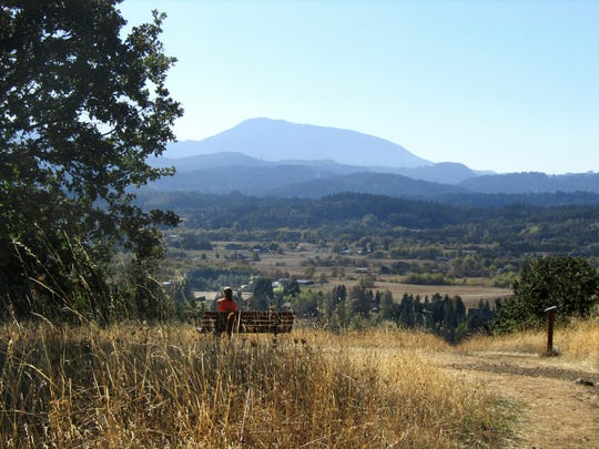 A view of Marys Peak from Bald Hill.