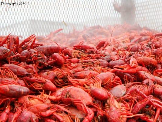 CrawfishFestBob Adamek.jpg
