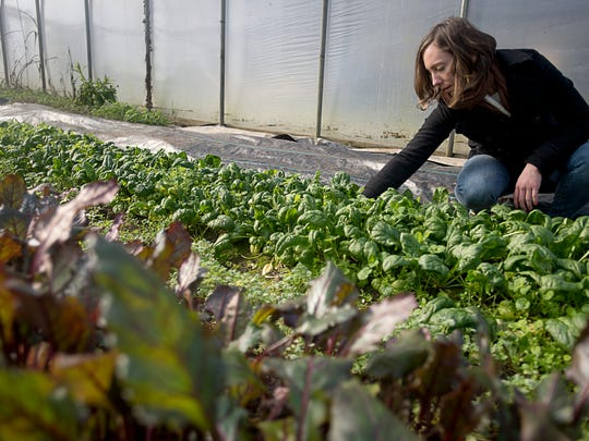 "Meredith Leigh, author of ""The Ethical Meat Handbook,"" picks through spinach Tuesday on a farm in Mills River."