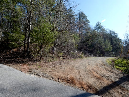 An undeveloped piece of property along Ferry Road in