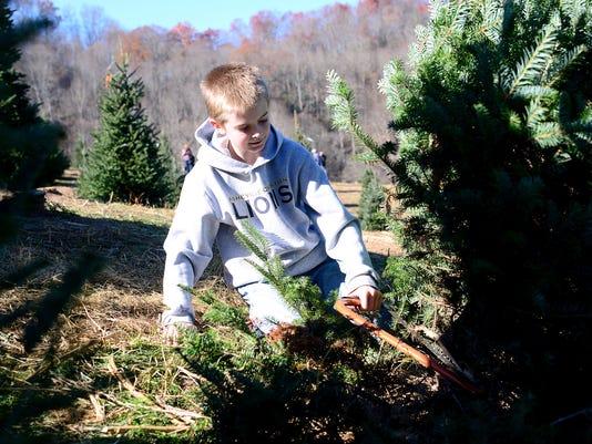 christmas tree farm about more than a tree - Christmas Tree Farm Asheville Nc