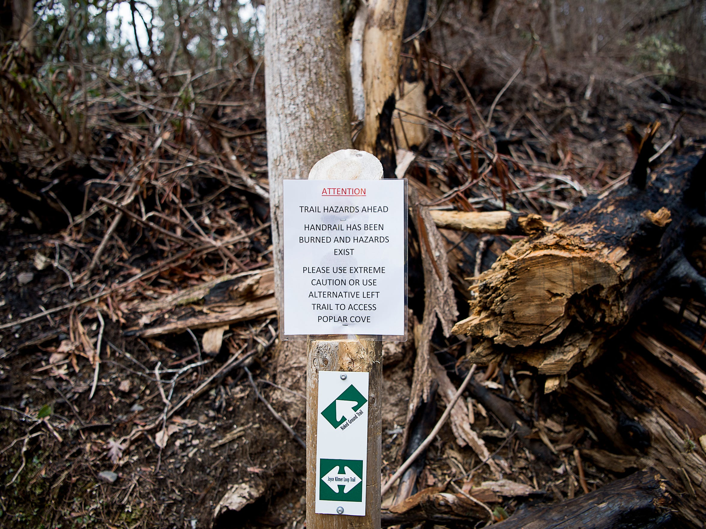 A sign warning of hazardous trees marks a trail surrounded by burned trees Feb. 2 at the Joyce Kilmer Memorial Forest.