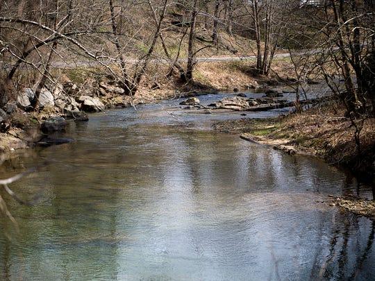 The Ivy River snakes alongside of Forks of Ivy Road