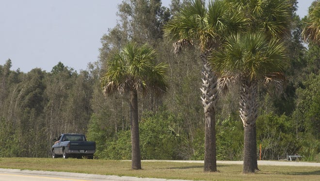 A truck drives by a proposed park off North Del Prado , north of Kismet in Cape Coral in this file photo from 2004.