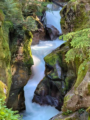Avalanche Creek is accessed from the Trail of the Cedars Nature Trail just off of Going-to-the Sun Road.
