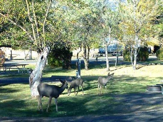 Goose Lake Recreation Site on the border of Oregon