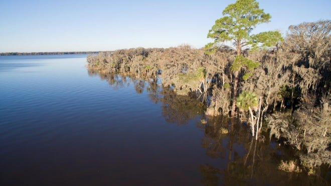 The Apalach Times