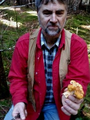 Phil McCorkle shows off a chanterelle in the Coast Range.