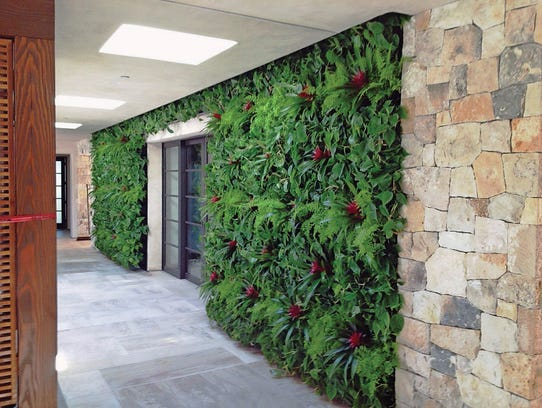 A living wall at a San Diego building is composed of
